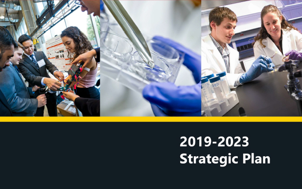 BIOE 2019-2023 Strategic Plan